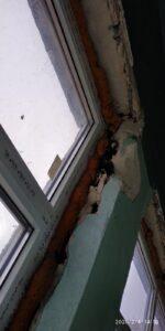які краще зробити відкоси на вікнах